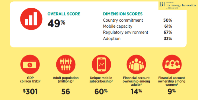 Egypt Scores 49% According to 2016 Financial Digital Inclusion Index Brookings