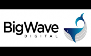 Big Wave Digital find the people driving the success of Australia's most exciting brands. They're connecting highly coveted candidates in digital, data and technology with the world's best employers.